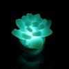 Healing lamp 多肉植物を作ってみよう!