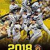 阪神タイガース優勝への道 2019年 使うべき野手とは?ポイントは塁打
