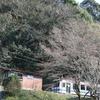 「桜と三江線」撮影ポイント予習編(乙原駅~沢谷駅)