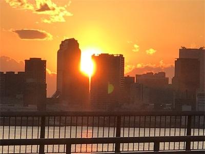 豊洲ぐるり公園ランニング 〜綺麗な夕陽〜