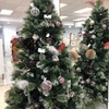 災害から考え直す、クリスマスの習慣。