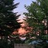 夏本番の北軽井沢・・・山々の緑の濃さから力強い生命を感じた2日間