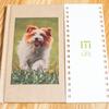 スマホからも作れる手軽なフォトブック「MYBOOK LIFE」で愛犬の写真集を作ってみた【book】