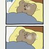 悲熊「朝」