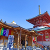 成田山新勝寺に初詣。祝 醫王殿建立。