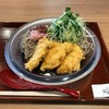 【長篠設楽PA】長篠陣屋食堂麺屋:鶏天梅おろしそば