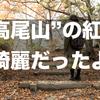2016年の高尾山の紅葉はいまがピーク!D750で撮影してきた!!