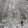 花冷の奥物部遊山 尾根の雪