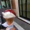 【年末のベルギー・イタリア旅行】7日目 ジェラートの名店「ジョリッティ」と知る人ぞ知るSAIDのチョコレート