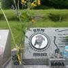 倖田來未さんの愛犬が眠る北白川ペット霊園で、祈りを捧げてきました