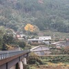 今日の中岡慎太郎遺髪墓地風景。