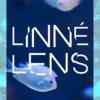 LINNÉ LENDSを使ってみた。生き物の名前が秒速で分かる!