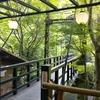 京都 高雄 納涼を求めて日帰り川床