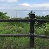 【体験記】東京湾唯一の無人島(猿島)上陸!子どもとプロナチュラリスト(佐々木洋氏)で自然探検してきたよ