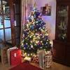 イギリスのクリスマス休み