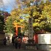 下鴨神社と鴨川デルタあたり散歩  立冬と冬至の間の頃 H29.11.19