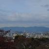 清水寺からの眺めです