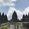 仏教&ヒンドゥー教の複合体
