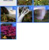 Swiftで複数画像選択できるようにする(DKImagePickerControllerの使い方)