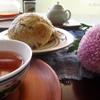 2016年、重陽、菊の節句。なかしましほさんの月餅を手作り。ひとしずくに心が凪ぐ、中国茶。ひとりのお昼に、簡単ごちそう蒸しランチ。