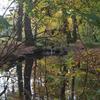 ブーロニュの森へ再び写真を撮りに訪れた