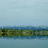 朱鞠内湖のイトウのポイント