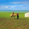 大草原と砂漠を走る8泊9日、モンゴル行き航空券手配  [モンゴル旅行2018]