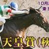 天皇賞・秋(2019)東京競馬場 芝2000M 予想 穴党