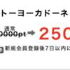 スーパー案件!?イトーヨーカドーネットスーパー利用で5000円利用すると、2500円キャッシュバックがもらえます♬