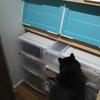 クローゼットの整理をしよう(1) 収納ケースのセッティングと洋服の取捨選択