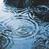 気象病?雨が続くと心身共に低調です