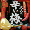 【感想】ピリッと辛口大人向け辛い梅味食べました!
