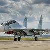 ロシアのスホイ30SM戦闘機がシリア沖の地中海に墜落し、操縦士ら2名が死亡!事故の原因は『バードストライク』か!?