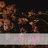 【品川】夜桜を撮りに行ってきました。