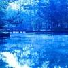 「魂の青写真」と「シンクロニシティ」と「豊かさ」
