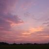 8月2日の夕陽雲&二日間の独り言