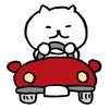 長男、車の免許取得。