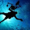 海の日こそ知ってほしい!ダイビングの楽しさについて