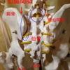 骨盤矯正の意味の捉え方は人それぞれ