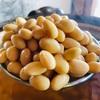 ココペリの田んぼの麹菌を使ってお味噌を仕込む。