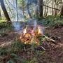 枯れ枝の焼却処分