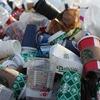 プラスチック廃止、グレタ・トゥンベリさんのスピーチ、環境活動の現状と意識、わたしにできること。