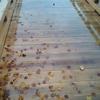 鏡になった橋で