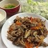 **豚肉と野菜の甘酢炒め**