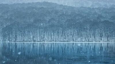 【青森】この時期にしか出会えない蔦沼を求めて。ー雪景色撮影のススメー