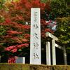 椿大神社の紅葉