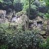中国禅宗五山 杭州霊隠寺は石仏天国