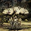 CDレビュー: MAN WITH A MISSION - Tales of Purefly(2014)