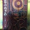 平林てい子さんの本の表紙の絵への未練