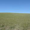初めてのモンゴル「観光旅行」(10)タヒ(モウコノウマ)を見にホスタイ国定公園へ